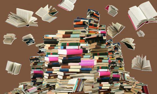 Buchclub:  literatura  y  alemán,  ¡combinación  perfecta!