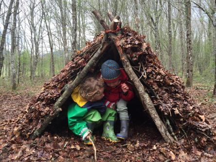 Waldschule: ikastola en el bosque